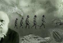 Photo of نقطهی کور داروین