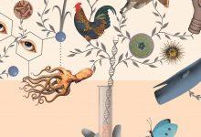 Photo of نگاهی اجمالی بر استدلال طراحی هوشمندانهی ویلیام دمبسکیهاوارد جی. ون تیل/ ترجمه: امیرحسین لطیفی